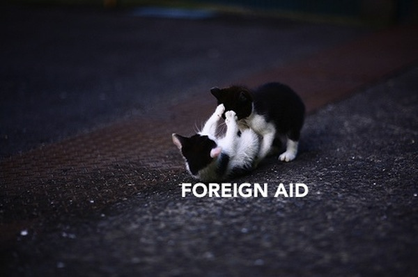 International Relations as Depicted by Cats Foreign Aid