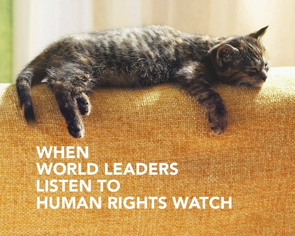 International Relations as Depicted by Cats Human Right Watchs