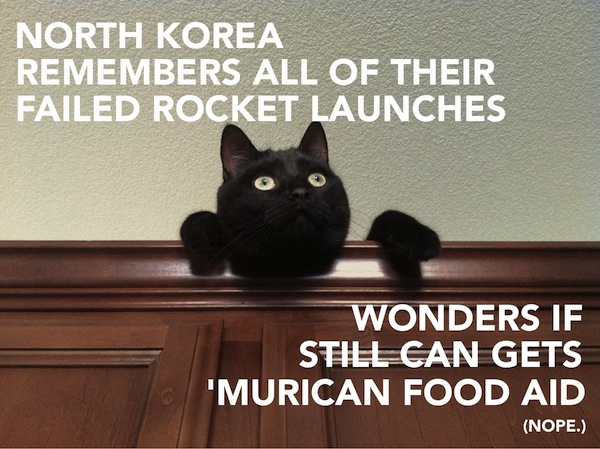 International Relations as Depicted by Cats Korea