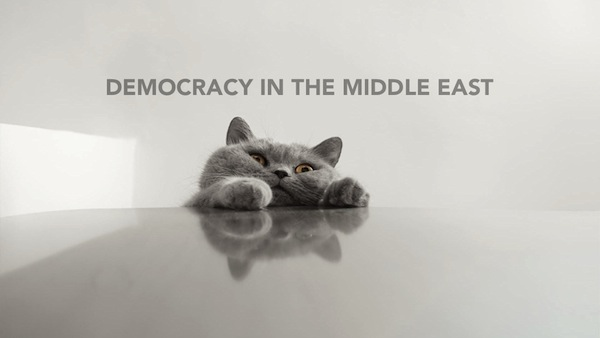 International Relations as Depicted by Cats Middle East