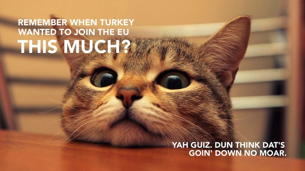 International Relations as Depicted by Cats Turkey