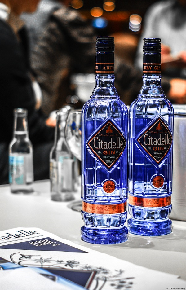 Gin CItadelle 2013 Blue French Gin