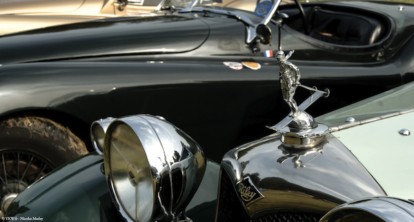 Chantilly Arts Elegance Riley Detail