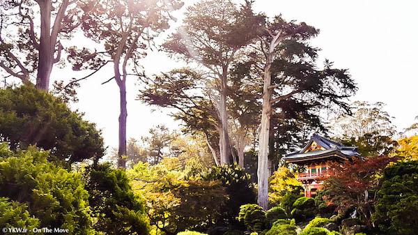 san-francisco-usa-japanese-garden-4